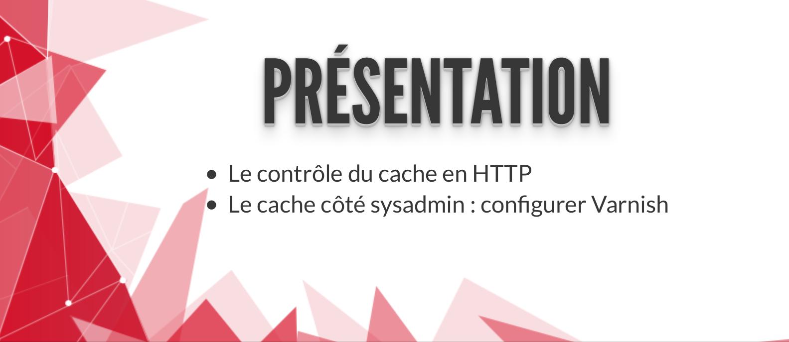 https://blog.evolix.ca/wp-content/uploads/2017/05/Presentation-de-systemes-de-cache.pdf