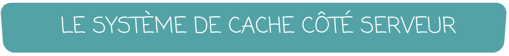 LE SYSTÈME DE CACHE CÔTÉ SERVEUR